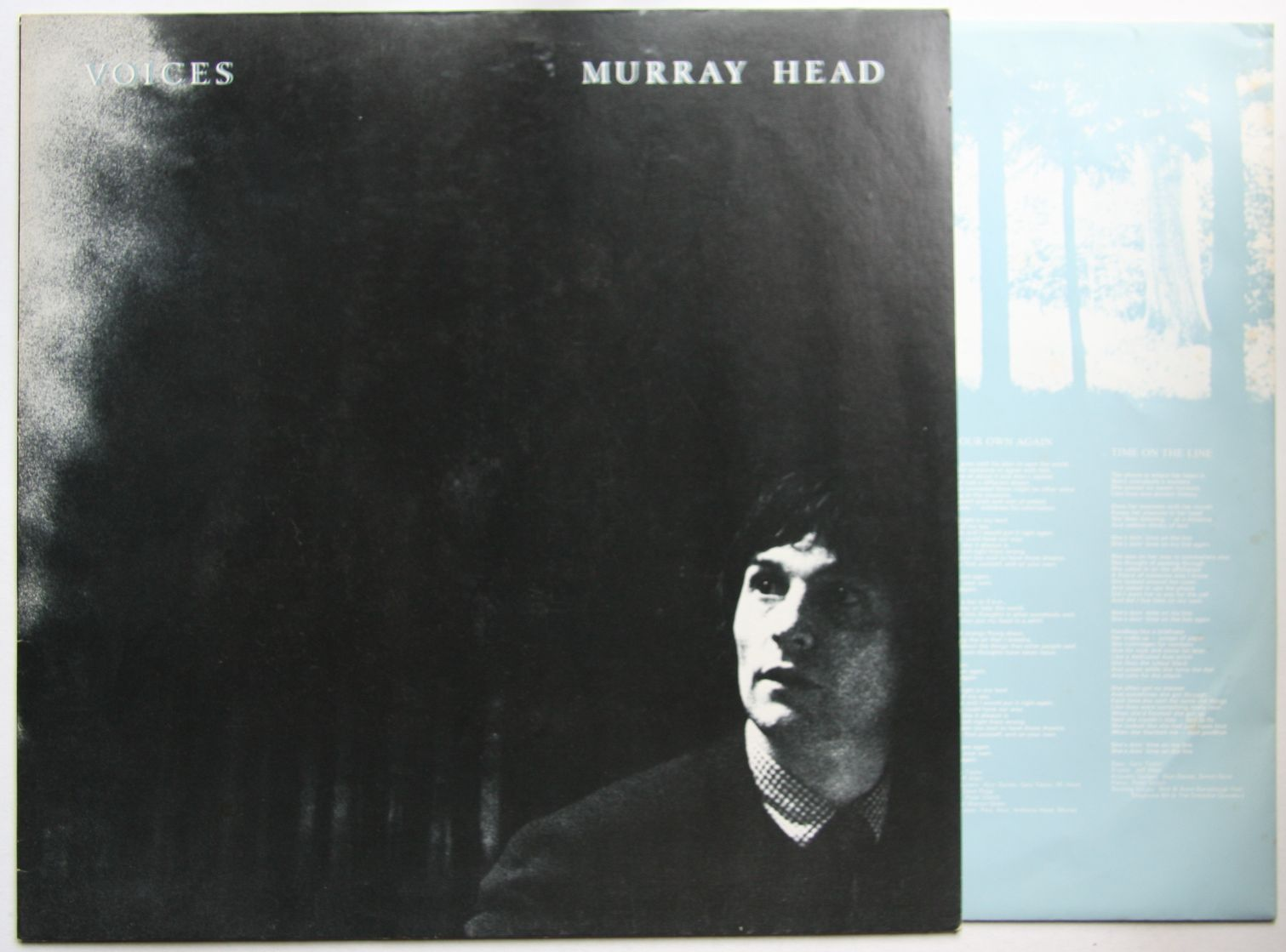 Murray Head Voices Records Lps Vinyl And Cds Musicstack