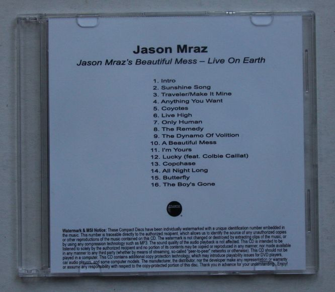 Jason Mraz's Beautiful Mess